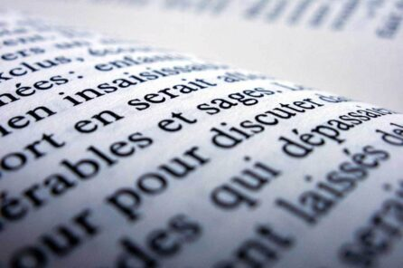 What is the total Number of Words in French Language?